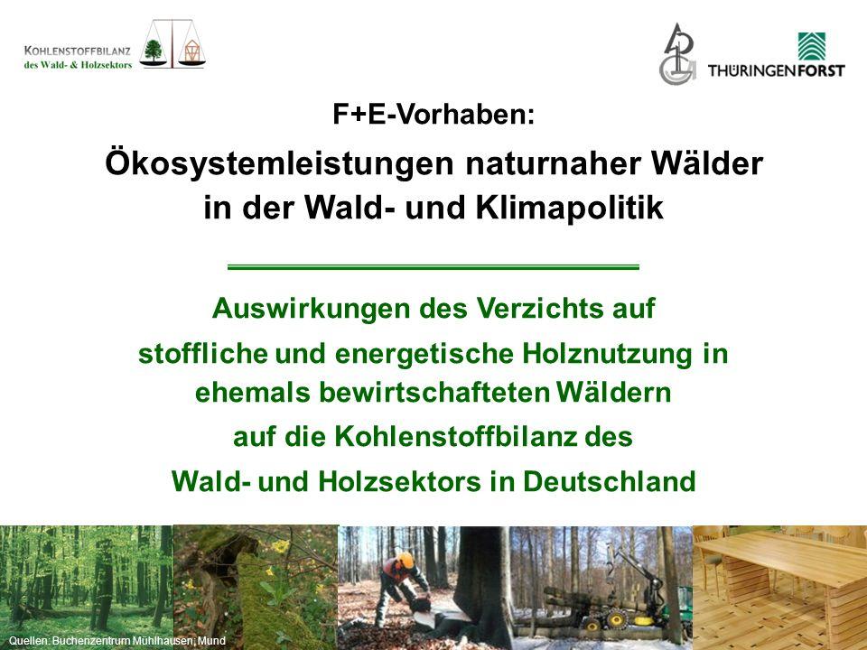 """Quellen: Buchenzentrum Mühlhausen; Mund Ziele (4)Identifikation von Synergien und Konflikten zwischen Biodiversitätsschutz im Wald und den Ökosystemdienstleistungen """"Holzproduktion und """"Kohlenstoffsequestrierung (5)Vorschläge für eine Optimierung der Flächenkulisse des 5%-Ziels zugunsten des Biodiversitäts- und Klimaschutzes"""