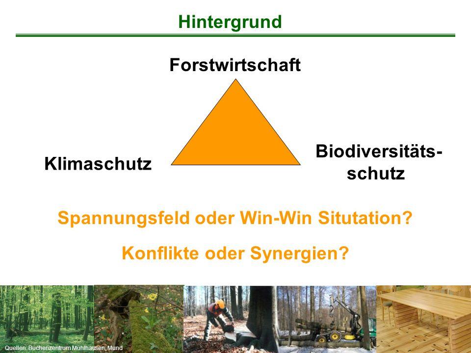 Quellen: Buchenzentrum Mühlhausen; Mund Forstwirtschaft Spannungsfeld oder Win-Win Situtation? Biodiversitäts- schutz Konflikte oder Synergien? Hinter
