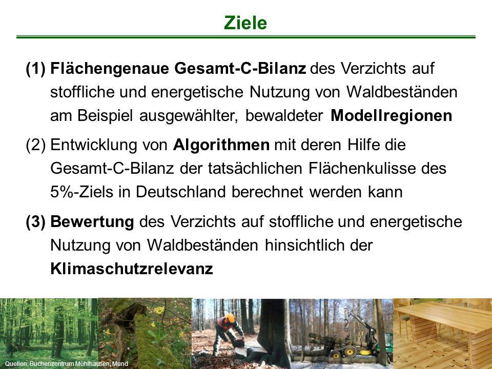 Quellen: Buchenzentrum Mühlhausen; Mund (1)Flächengenaue Gesamt-C-Bilanz des Verzichts auf stoffliche und energetische Nutzung von Waldbeständen am Be