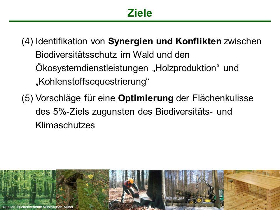 Quellen: Buchenzentrum Mühlhausen; Mund Ziele (4)Identifikation von Synergien und Konflikten zwischen Biodiversitätsschutz im Wald und den Ökosystemdi