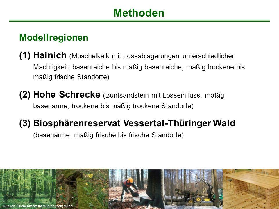 Quellen: Buchenzentrum Mühlhausen; Mund Modellregionen (1)Hainich (Muschelkalk mit Lössablagerungen unterschiedlicher Mächtigkeit, basenreiche bis mäß