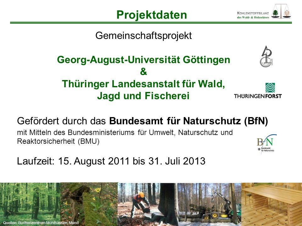 Quellen: Buchenzentrum Mühlhausen; Mund Projektleitung Prof.