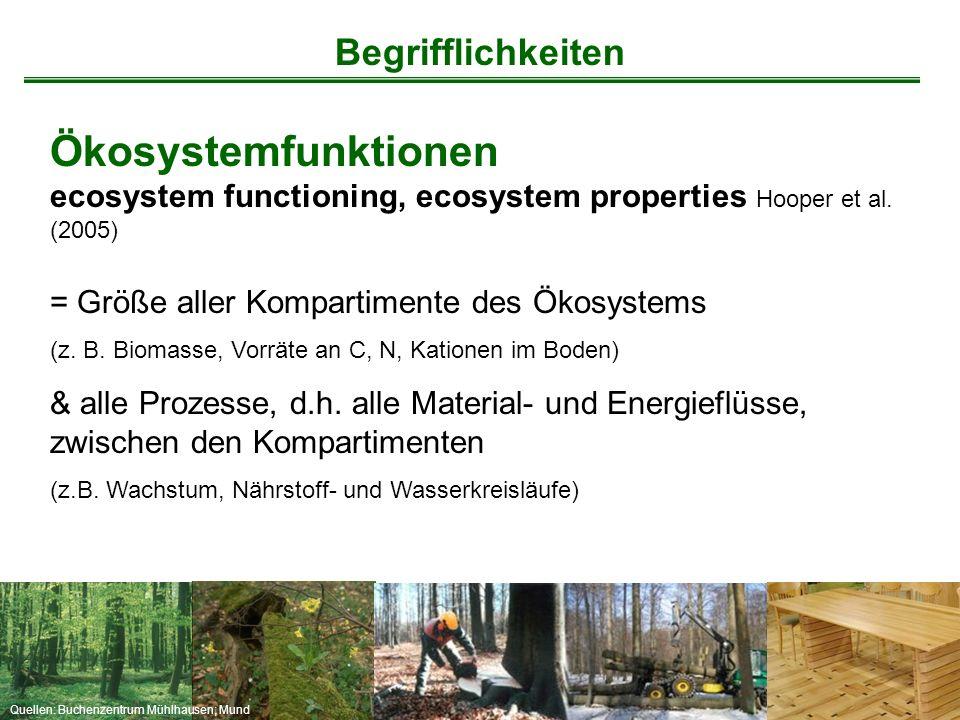 Quellen: Buchenzentrum Mühlhausen; Mund Begrifflichkeiten Ökosystemfunktionen ecosystem functioning, ecosystem properties Hooper et al. (2005) = Größe