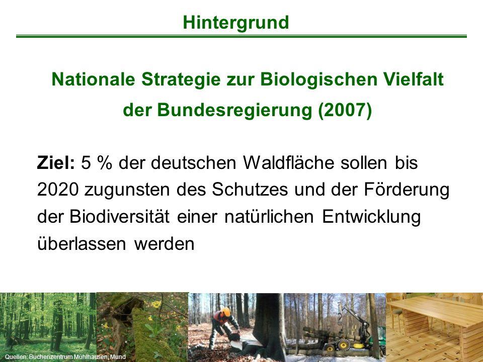 Quellen: Buchenzentrum Mühlhausen; Mund Nationale Strategie zur Biologischen Vielfalt der Bundesregierung (2007) Ziel: 5 % der deutschen Waldfläche so