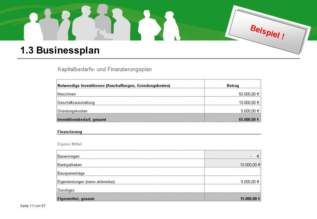 Seite 11 von 67 1.3 Businessplan
