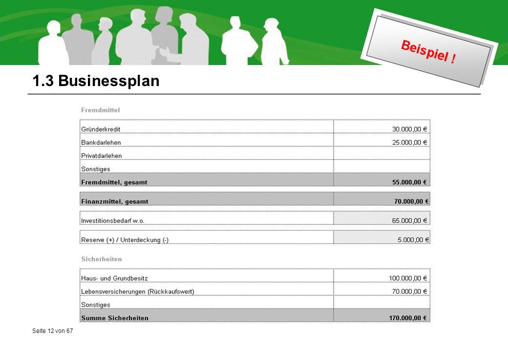 Seite 12 von 67 1.3 Businessplan
