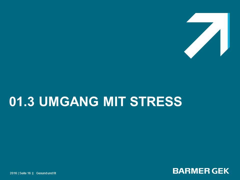 01.3 UMGANG MIT STRESS 2016Gesund und fit| Seite 16 ||