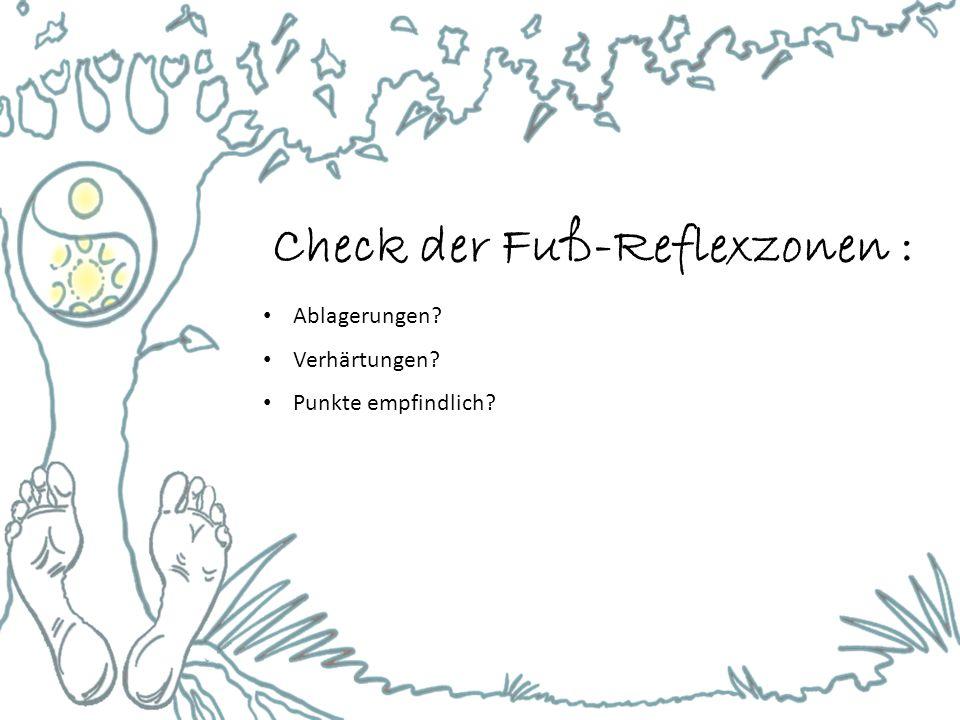 Check der Fuß-Reflexzonen : Ablagerungen? Verhärtungen? Punkte empfindlich?