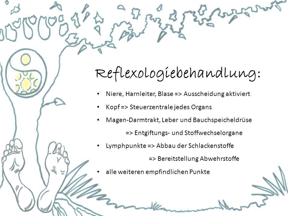 Reflexologiebehandlung: Niere, Harnleiter, Blase => Ausscheidung aktiviert Kopf => Steuerzentrale jedes Organs Magen-Darmtrakt, Leber und Bauchspeiche