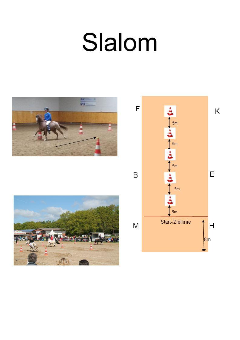 Slalom B F K E MH Start-/Ziellinie 8m 5m