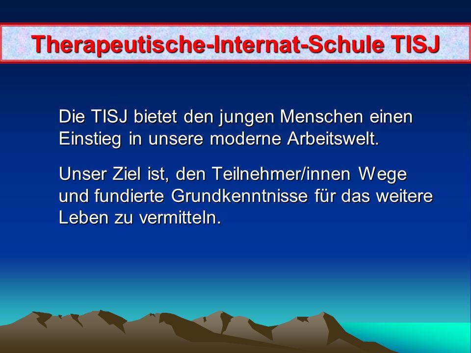 Betriebsart Betriebsart Name des Betriebes TISJ. Therapeutische-Internat-Schule für Jungerwachsene Geschäftsnatur : Gesellschaft Gegründet : 2006 Grün