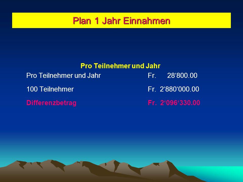 Plan 1 Jahr Allgemeine Nebenkosten Reinigungsmittel Allgemein Fr.