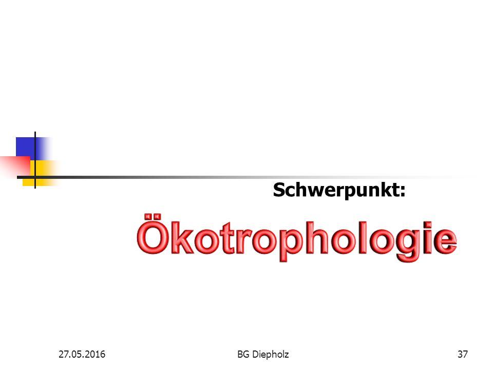 27.05.2016BG Diepholz36 Na klar – Berufliches Gymnasium Wirtschaft Na klar – Berufliches Gymnasium Wirtschaft