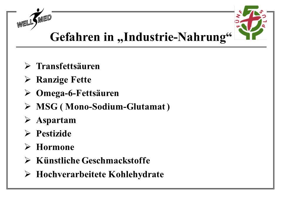 """Gefahren in """"Industrie-Nahrung  Transfettsäuren  Ranzige Fette  Omega-6-Fettsäuren  MSG ( Mono-Sodium-Glutamat )  Aspartam  Pestizide  Hormone  Künstliche Geschmackstoffe  Hochverarbeitete Kohlehydrate"""