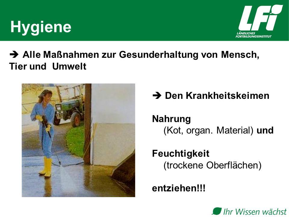 Hygiene  Den Krankheitskeimen Nahrung (Kot, organ.