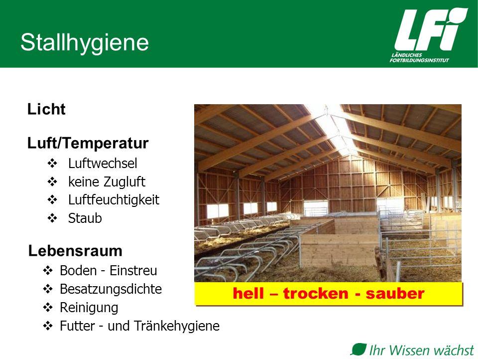 Stallhygiene Licht Luft/Temperatur  Luftwechsel  keine Zugluft  Luftfeuchtigkeit  Staub Lebensraum  Boden - Einstreu  Besatzungsdichte  Reinigung  Futter - und Tränkehygiene hell – trocken - sauber