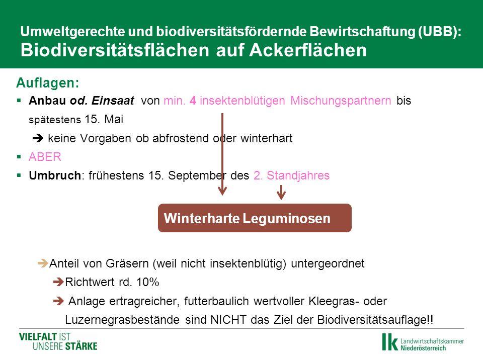 Umweltgerechte und biodiversitätsfördernde Bewirtschaftung (UBB): Biodiversitätsflächen auf Ackerflächen Auflagen:  Anbau od. Einsaat von min. 4 inse