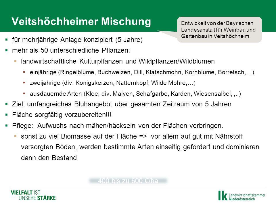 Veitshöchheimer Mischung  für mehrjährige Anlage konzipiert (5 Jahre)  mehr als 50 unterschiedliche Pflanzen:  landwirtschaftliche Kulturpflanzen u