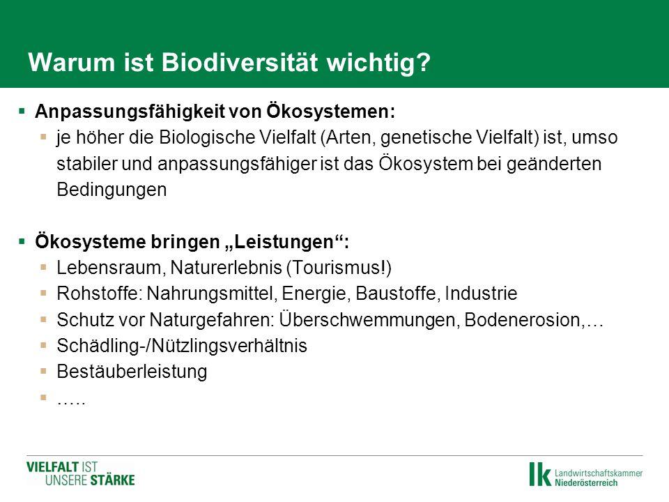 Warum ist Biodiversität wichtig?  Anpassungsfähigkeit von Ökosystemen:  je höher die Biologische Vielfalt (Arten, genetische Vielfalt) ist, umso sta