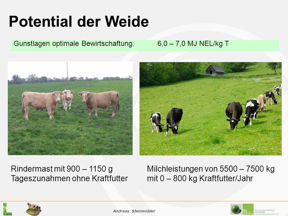 Andreas Steinwidder Potential der Weide Gunstlagen optimale Bewirtschaftung:6,0 – 7,0 MJ NEL/kg T Milchleistungen von 5500 – 7500 kg mit 0 – 800 kg Kraftfutter/Jahr Rindermast mit 900 – 1150 g Tageszunahmen ohne Kraftfutter