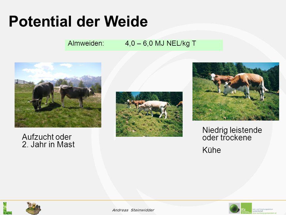 Andreas Steinwidder Potential der Weide Almweiden:4,0 – 6,0 MJ NEL/kg T Niedrig leistende oder trockene Kühe Aufzucht oder 2.