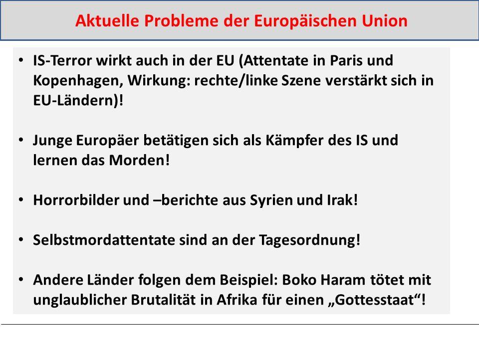 IS-Terror wirkt auch in der EU (Attentate in Paris und Kopenhagen, Wirkung: rechte/linke Szene verstärkt sich in EU-Ländern).