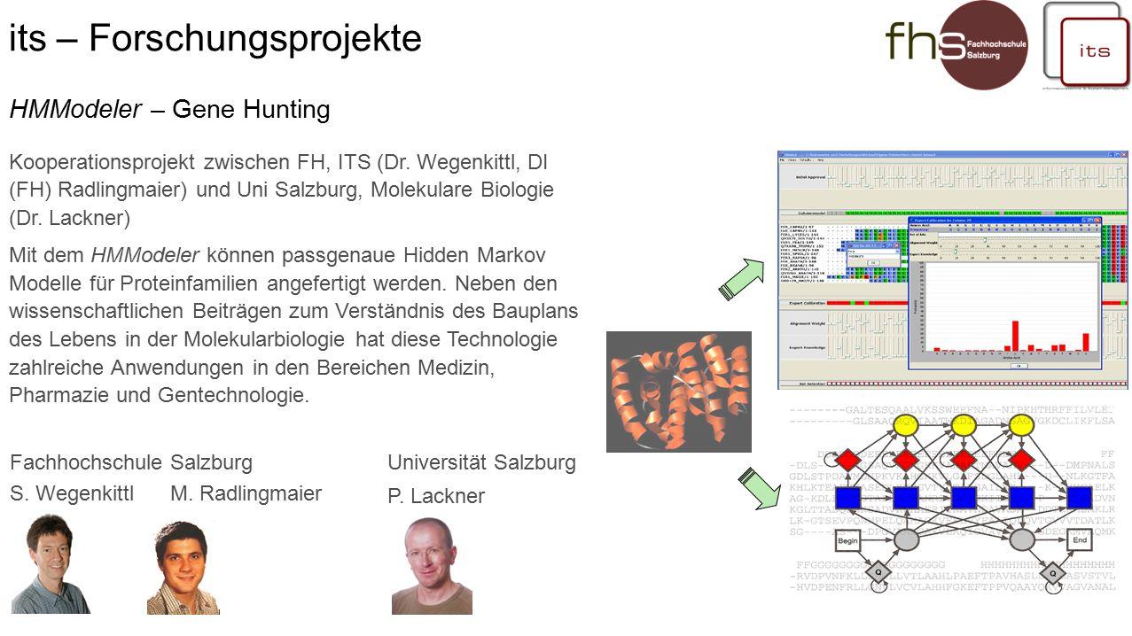 its – Forschungsprojekte Fachhochschule Salzburg S.