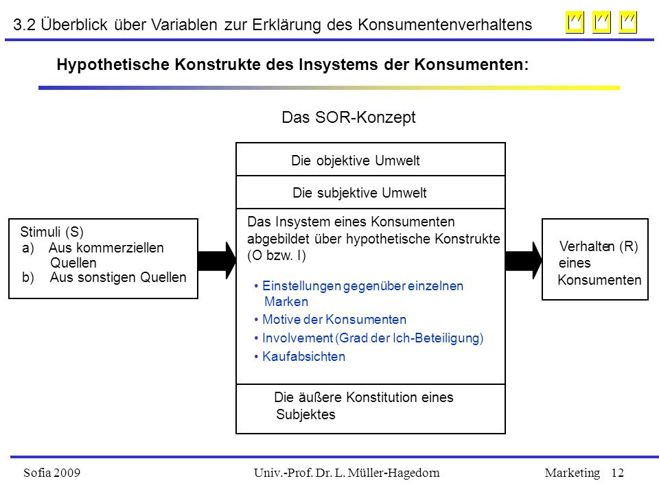 Univ.-Prof. Dr. L. Müller-HagedornSofia 2009Marketing12 Stimuli (S) a) Aus kommerziellen Quellen b) Aus sonstigen Quellen Die objektive Umwelt Die sub