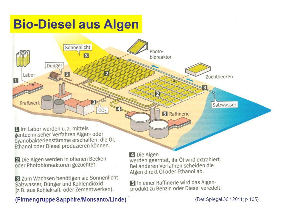 (Der Spiegel 30 / 2011; p.105) (Firmengruppe Sapphire/Monsanto/Linde) Bio-Diesel aus Algen