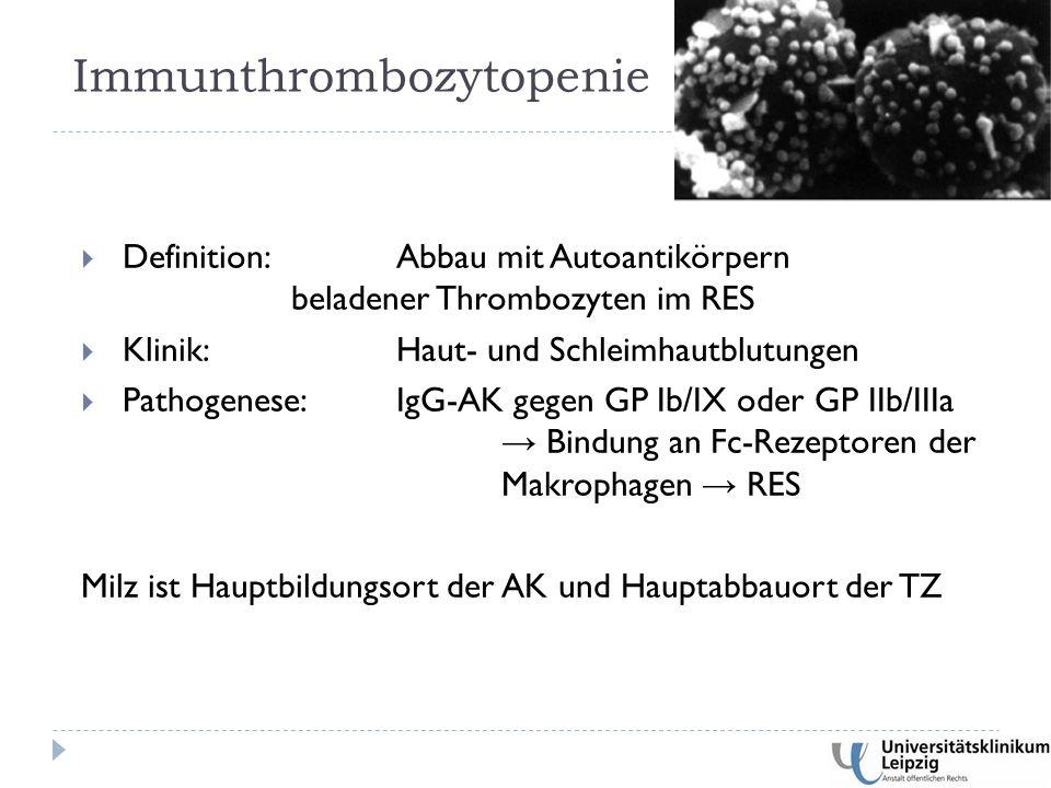 Immunthrombozytopenie  Definition: Abbau mit Autoantikörpern beladener Thrombozyten im RES  Klinik: Haut- und Schleimhautblutungen  Pathogenese: IgG-AK gegen GP Ib/IX oder GP IIb/IIIa → Bindung an Fc-Rezeptoren der Makrophagen → RES Milz ist Hauptbildungsort der AK und Hauptabbauort der TZ