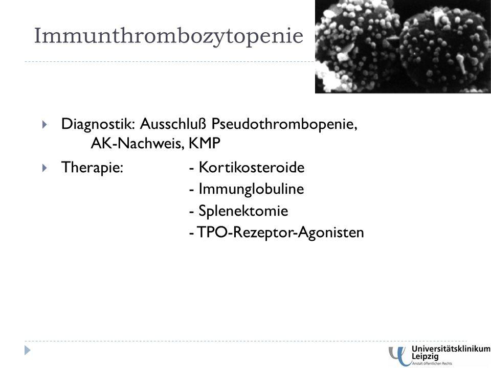  Diagnostik: Ausschluß Pseudothrombopenie, AK-Nachweis, KMP  Therapie: - Kortikosteroide - Immunglobuline - Splenektomie - TPO-Rezeptor-Agonisten Immunthrombozytopenie