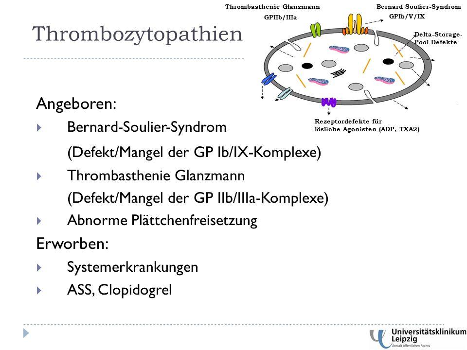 Angeboren:  Bernard-Soulier-Syndrom (Defekt/Mangel der GP Ib/IX-Komplexe)  Thrombasthenie Glanzmann (Defekt/Mangel der GP IIb/IIIa-Komplexe)  Abnorme Plättchenfreisetzung Erworben:  Systemerkrankungen  ASS, Clopidogrel Thrombozytopathien GPIb/V/IX GPIIb/IIIa Rezeptordefekte für lösliche Agonisten (ADP, TXA2) Delta-Storage- Pool-Defekte Bernard Soulier-Syndrom Thrombasthenie Glanzmann