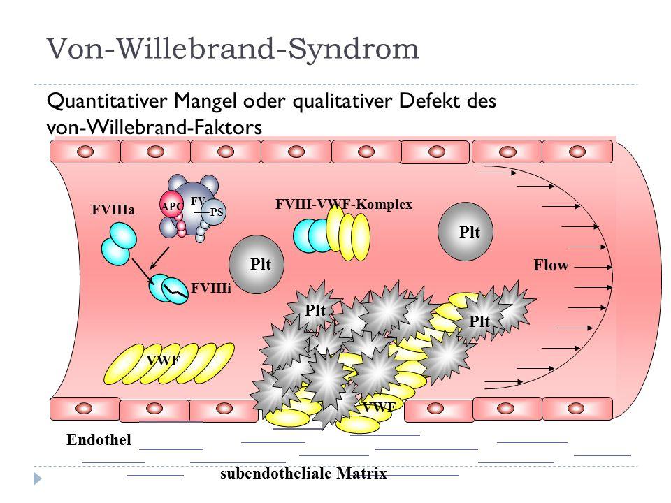 FVIIIa FVIIIi APC PS FV FVIII-VWF-Komplex VWF Endothel VWF Flow subendotheliale Matrix Plt Von-Willebrand-Syndrom Quantitativer Mangel oder qualitativer Defekt des von-Willebrand-Faktors