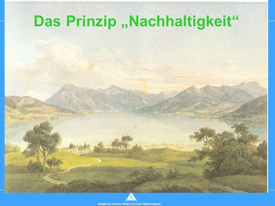 """Technische Universität München Mitglied im Zentrum Wald Forst Holz Weihenstephan Das Prinzip """"Nachhaltigkeit"""