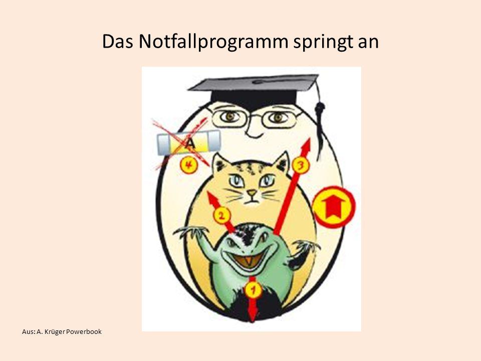 Das Notfallprogramm springt an Aus: A. Krüger Powerbook