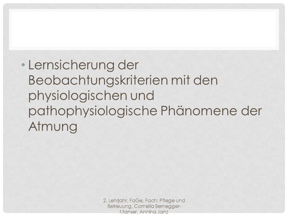 Lernsicherung der Beobachtungskriterien mit den physiologischen und pathophysiologische Phänomene der Atmung 2.