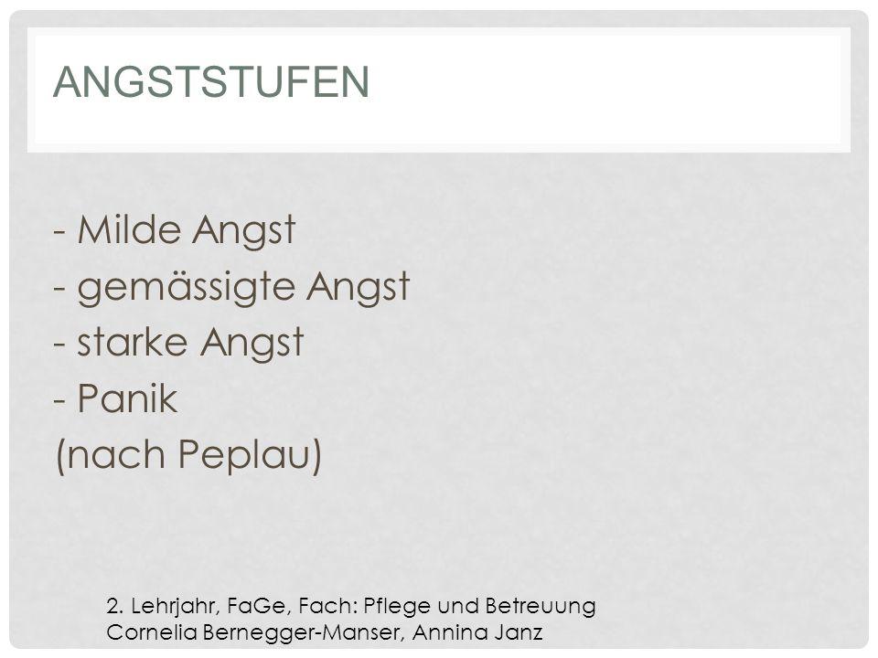 ANGSTSTUFEN - Milde Angst - gemässigte Angst - starke Angst - Panik (nach Peplau) 2.