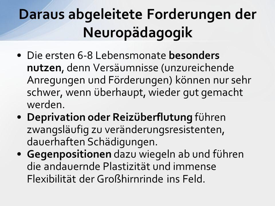 Daraus abgeleitete Forderungen der Neuropädagogik Die ersten 6-8 Lebensmonate besonders nutzen, denn Versäumnisse (unzureichende Anregungen und Förderungen) können nur sehr schwer, wenn überhaupt, wieder gut gemacht werden.
