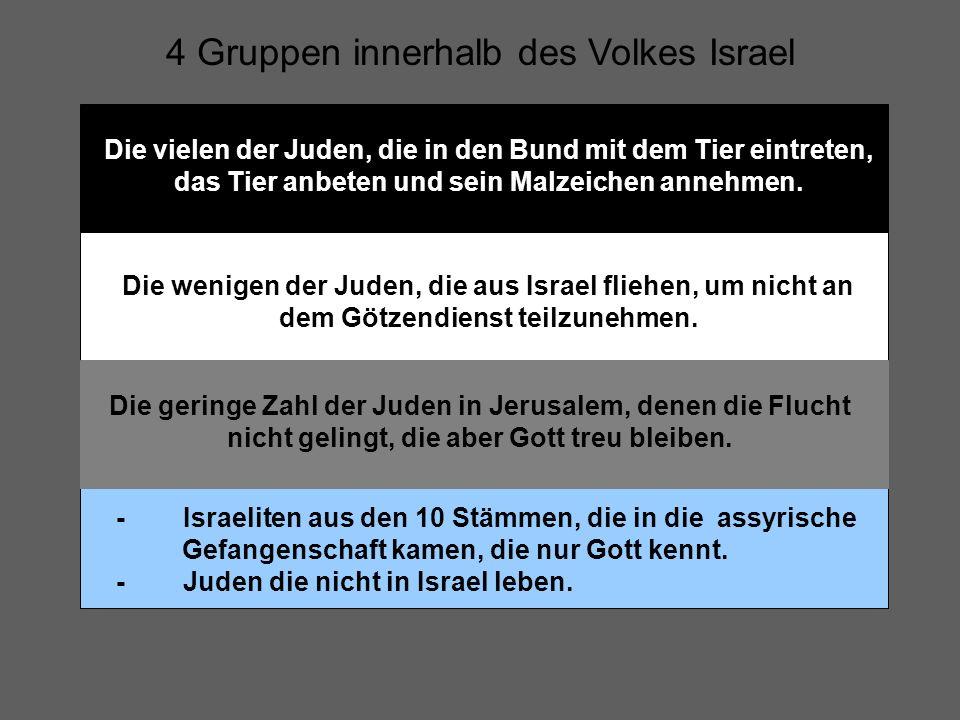 4 Gruppen innerhalb des Volkes Israel Die vielen der Juden, die in den Bund mit dem Tier eintreten, das Tier anbeten und sein Malzeichen annehmen. Die