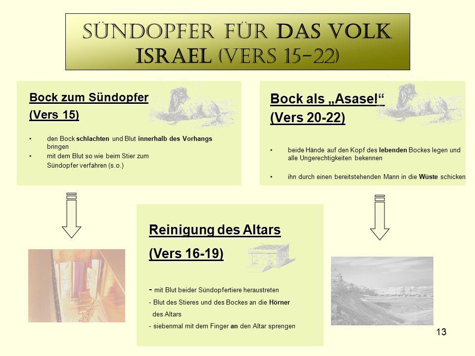 13 Sündopfer für das Volk Israel (Vers 15-22) Bock zum Sündopfer (Vers 15) den Bock schlachten und Blut innerhalb des Vorhangs bringen mit dem Blut so