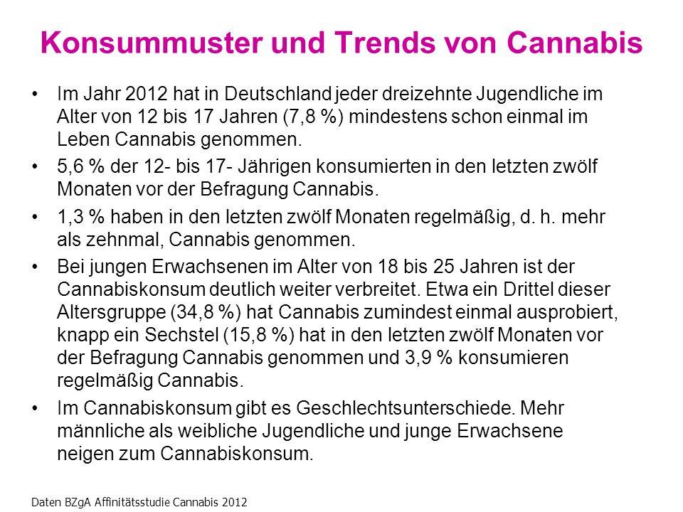Im Jahr 2012 hat in Deutschland jeder dreizehnte Jugendliche im Alter von 12 bis 17 Jahren (7,8 %) mindestens schon einmal im Leben Cannabis genommen.