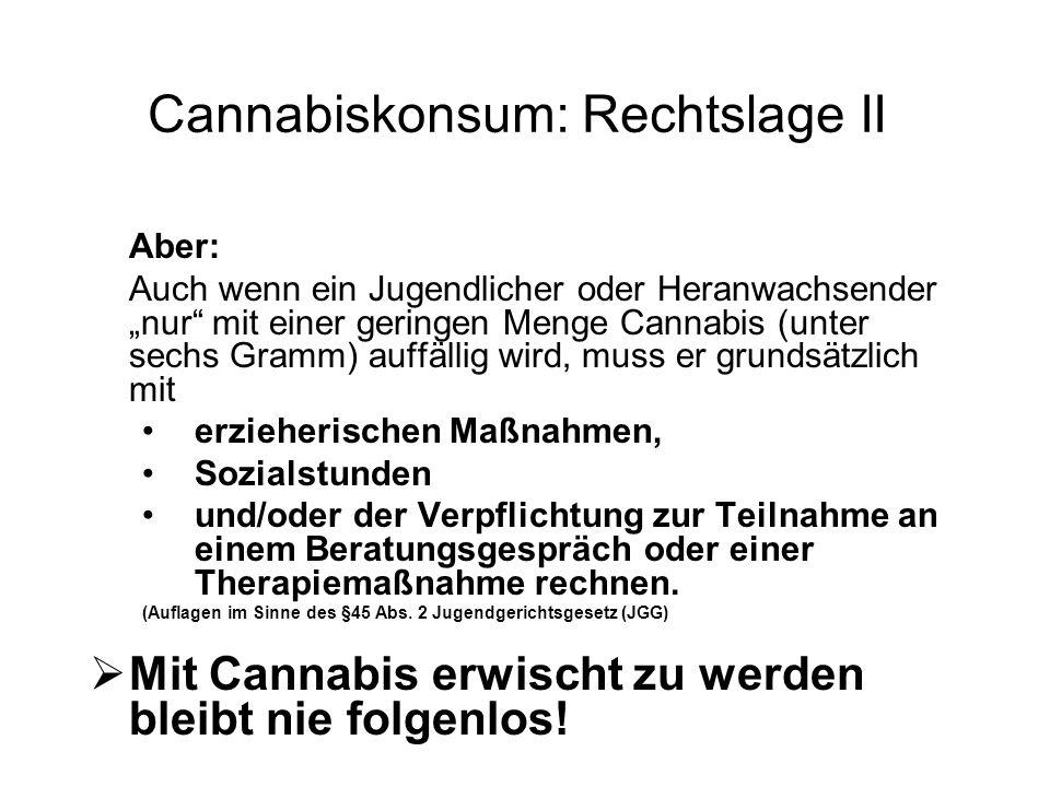 """Cannabiskonsum: Rechtslage II Aber: Auch wenn ein Jugendlicher oder Heranwachsender """"nur mit einer geringen Menge Cannabis (unter sechs Gramm) auffällig wird, muss er grundsätzlich mit erzieherischen Maßnahmen, Sozialstunden und/oder der Verpflichtung zur Teilnahme an einem Beratungsgespräch oder einer Therapiemaßnahme rechnen."""