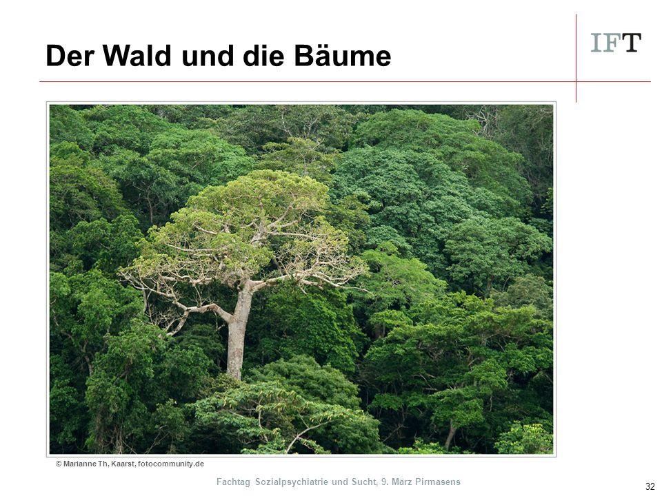 Der Wald und die Bäume 32 © Marianne Th, Kaarst, fotocommunity.de Fachtag Sozialpsychiatrie und Sucht, 9.