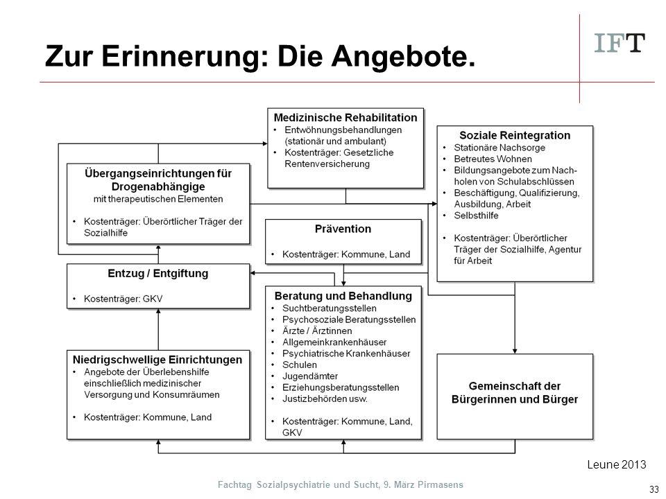 Zur Erinnerung: Die Angebote. 33 Leune 2013 Fachtag Sozialpsychiatrie und Sucht, 9. März Pirmasens