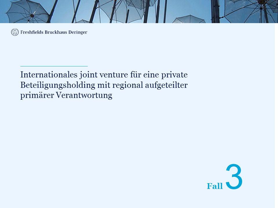Print divider Fall Internationales joint venture für eine private Beteiligungsholding mit regional aufgeteilter primärer Verantwortung 3