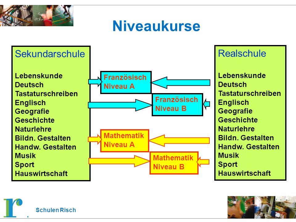 Schulen Risch Französisch Niveau A Niveaukurse Sekundarschule Lebenskunde Deutsch Tastaturschreiben Englisch Geografie Geschichte Naturlehre Bildn.