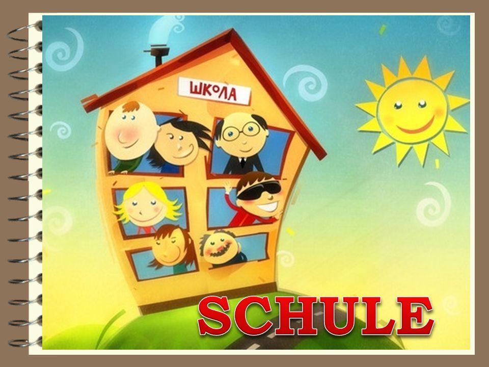 Das Schema des deutschen Schulsystems
