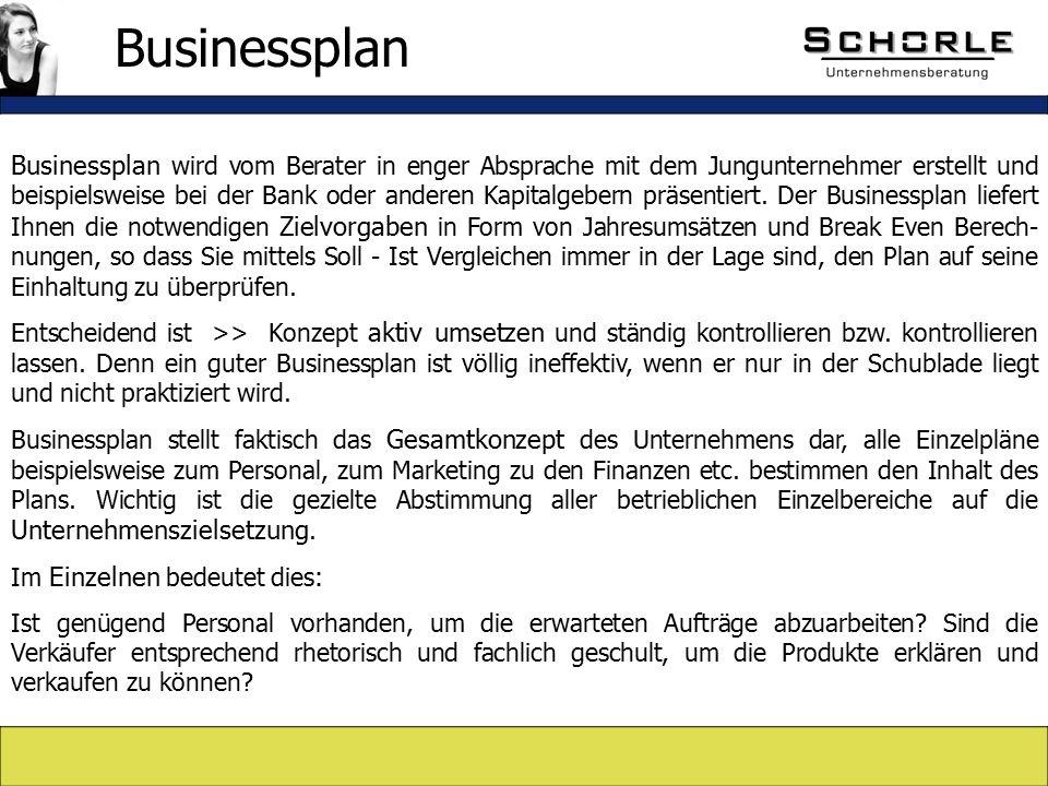 Businessplan wird vom Berater in enger Absprache mit dem Jungunternehmer erstellt und beispielsweise bei der Bank oder anderen Kapitalgebern präsentiert.