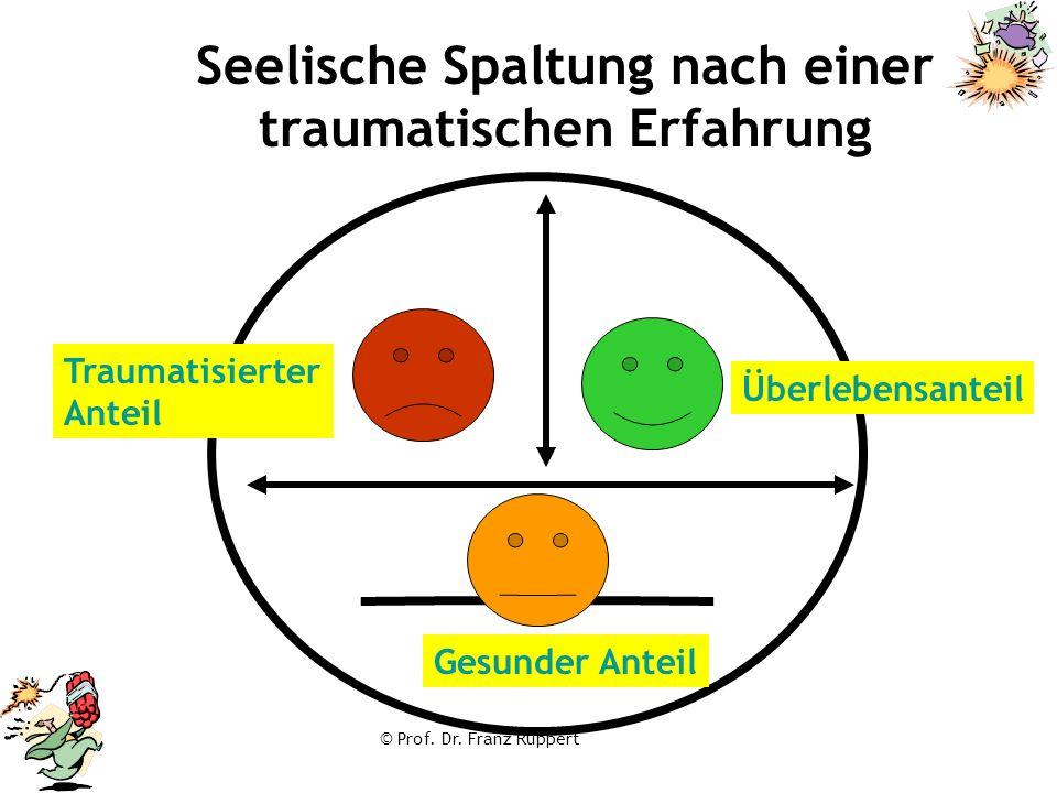 © Prof. Dr. Franz Ruppert Seelische Spaltung nach einer traumatischen Erfahrung Traumatisierter Anteil Gesunder Anteil Überlebensanteil