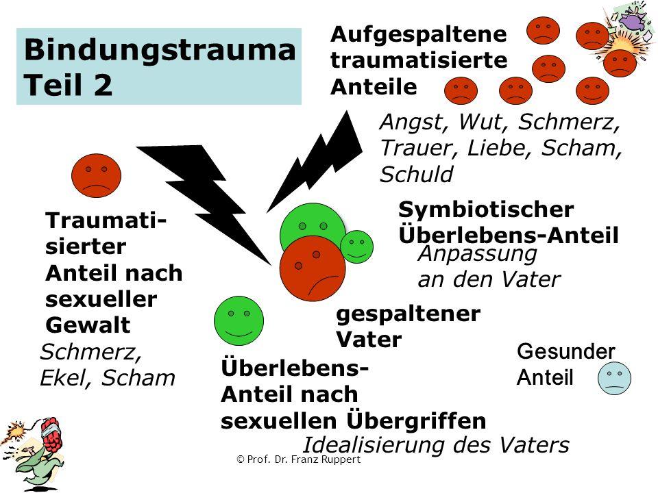 © Prof. Dr. Franz Ruppert Symbiotischer Überlebens-Anteil Aufgespaltene traumatisierte Anteile Bindungstrauma Teil 2 gespaltener Vater Überlebens- Ant